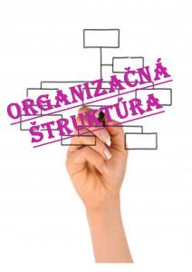 organizacna struktura